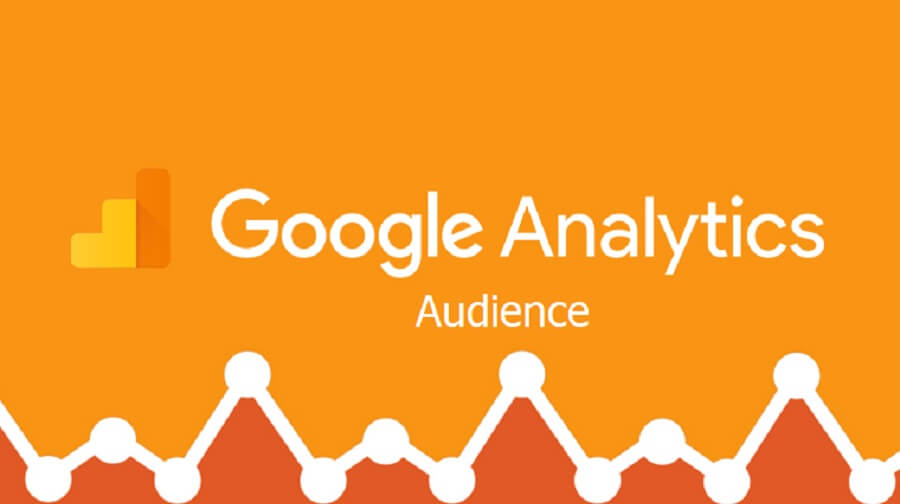 راهنمای کامل گزارش Audience در گوگل آنالیتیکس