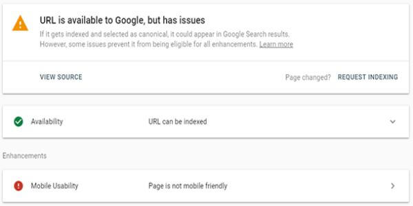 URL is on Google, but has issues